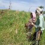 Improving Farm Practices
